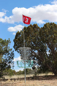 Disc golfers seek to land their discs in supported metal baskets in the fewest number of shots.