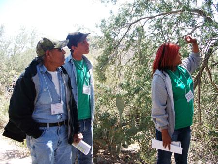 TOHONO O'ODHAM COMMUNITY COLLEGE ONLINE PLANT ATLAS PROJECT