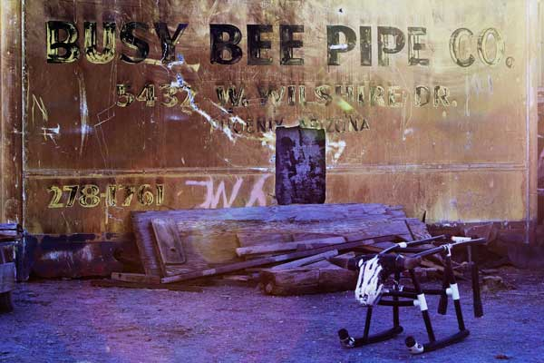 BUSY BEE BY KAYLA JACKSON, DINE COLLEGE