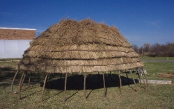 GRASS THATCHED ARBOR AT HASKELL