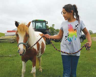 HORSE-BASED THERAPY LEADS TO AN INCREASE IN CONFIDENCE