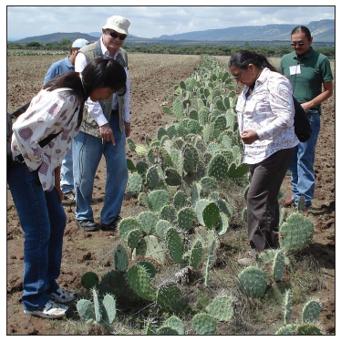 NTC AND DINE COLLEGES SHARE AGRICULTURAL KNOWLEDGE