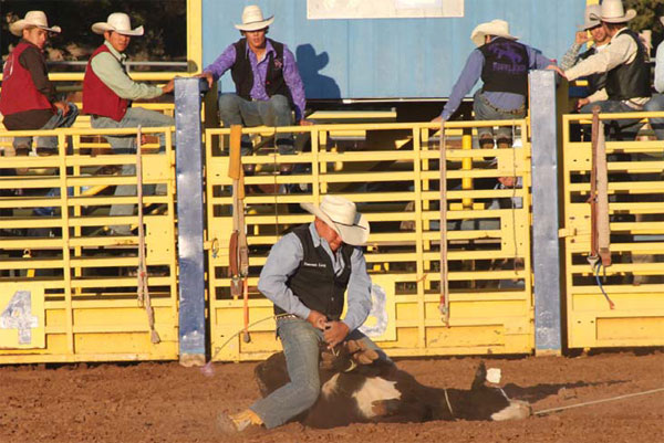 RODEO CHAMP. NTC athlete Emerson Long ties down his calf during the tie-down event at the Diné College rodeo. Long is currently in fourth place in the tie-down event in the Grand Canyon Region of the National Intercollegiate Rodeo Association.