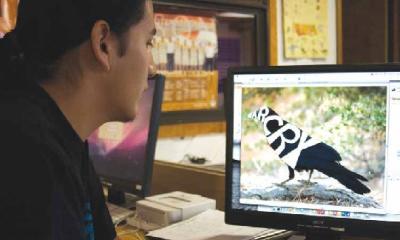 DIGITAL ARTS STUDENT WORKS ON LOGO